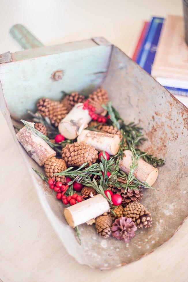 Shady Grove Christmas-1