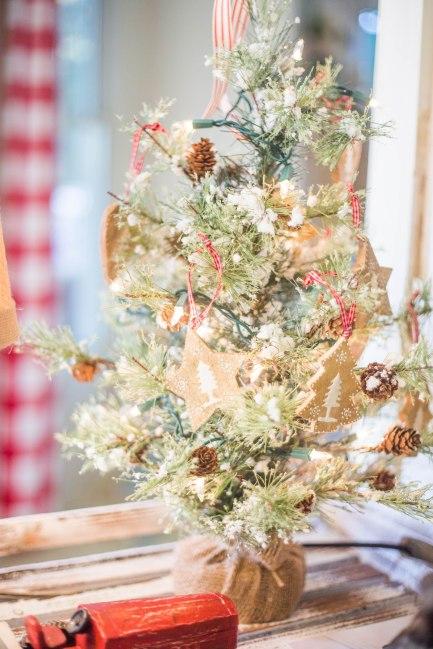 Shady Grove Christmas-36